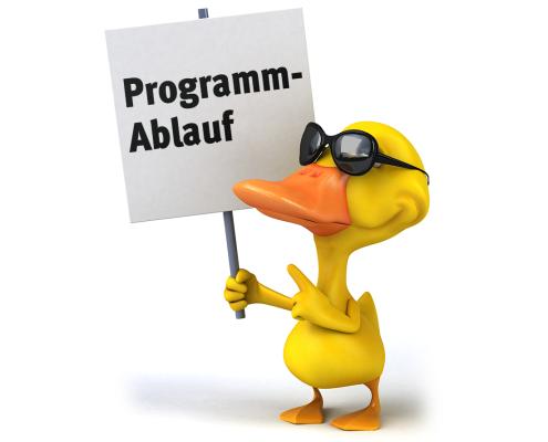 Programmablauf